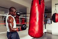 Боксерские перчатки 12 унций