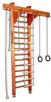 Шведская стенка Wooden Ladder (сeiling)