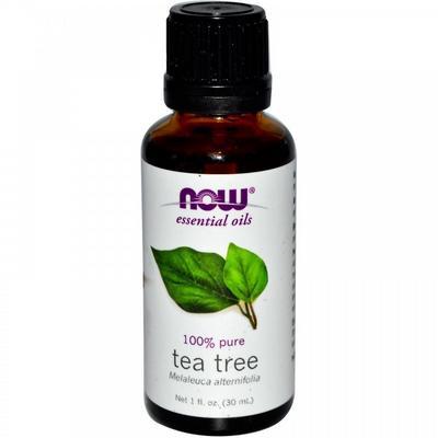Tea Tree Oil (масло чайного дерева)