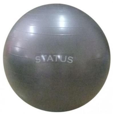 Гимнастический мяч с насосом