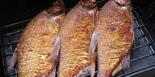 Самая диетическая рыба для похудения: какую рыбу можно есть при похудении, список лучших полезных сортов