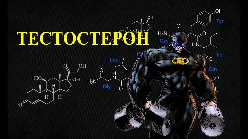 повышение тестостерона у мужчин препараты