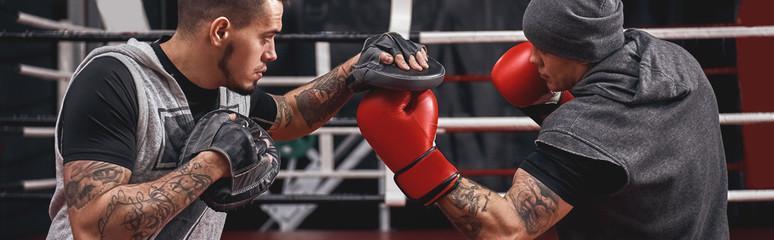 Боксерские перчатки 12 унций что это и для кого