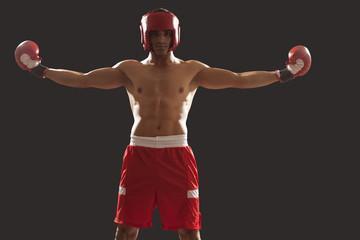 Профессиональные боксерские перчатки для боя