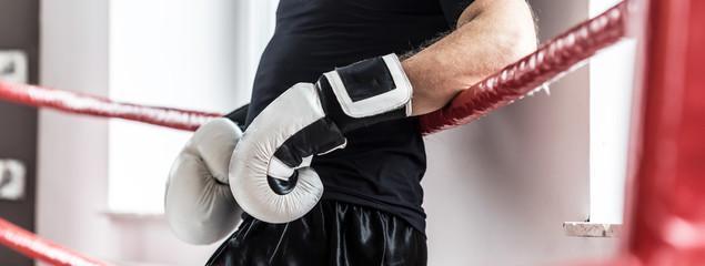 боксерские перчатки 18 унций фото