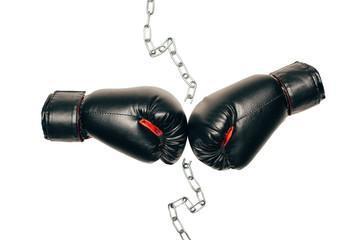 самые лучшие боксерских перчаток 14 унций
