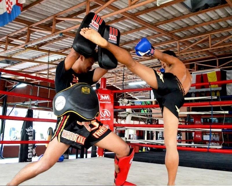 Тайский бокс лапы и макивары