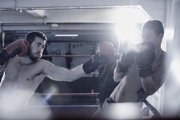 боксерские перчатки для тренировок