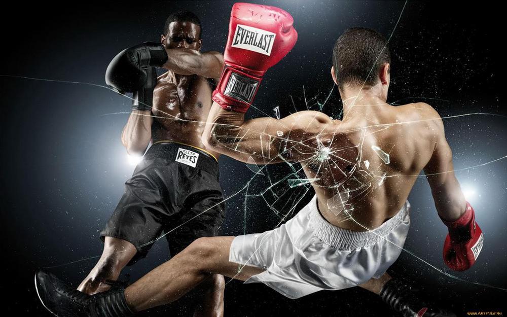боксерские перчатки Everlast Elite ProStyle для мужчин