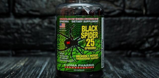 Black Spider состав