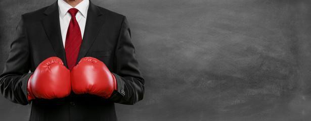 Боксерские перчатки Everlast фото