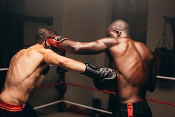 перчатки боксерские 10 унций oz набивка из пены