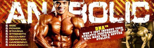 bcaa dna magnum для роста мышц