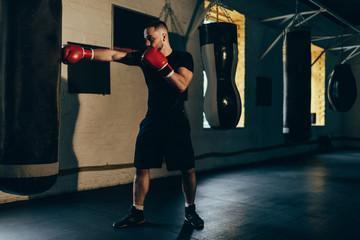 боксерские перчатки 10 унций для соревнований