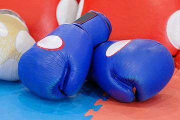 Боксерские перчатки Твинс оригинал Тайланд