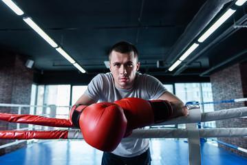 боксерские перчатки для тайского бокса тренировочные кожа