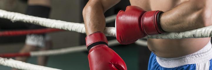 красные боксерские перчатки оригинал