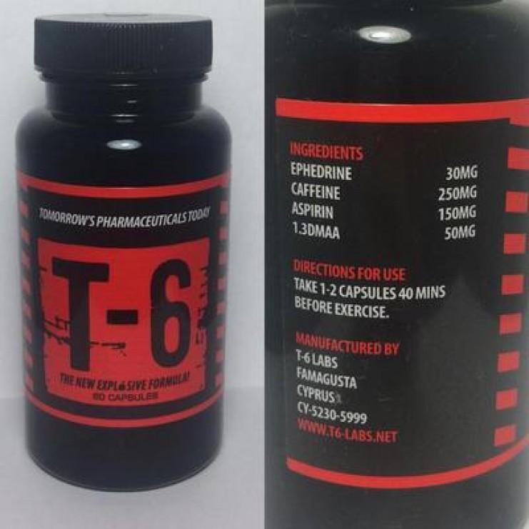T6 Zion жиросжигатель состав