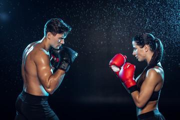 Боксерские перчатки Ringside RPE