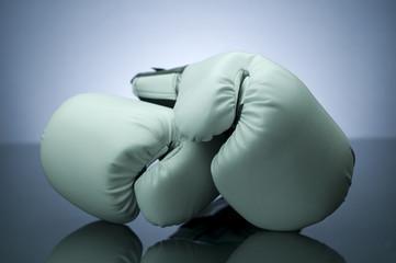 белые боксерские перчатки для тренировок
