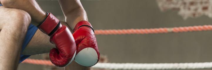боксерские перчатки 12 унций кожа