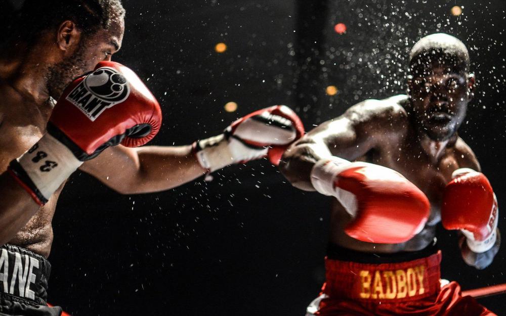 защита тренера для бокса и единоборств экипировка