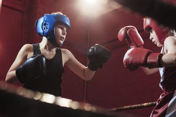 Профессиональные боксерские перчатки фото