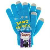 Сенсорные перчатки Зима-холода