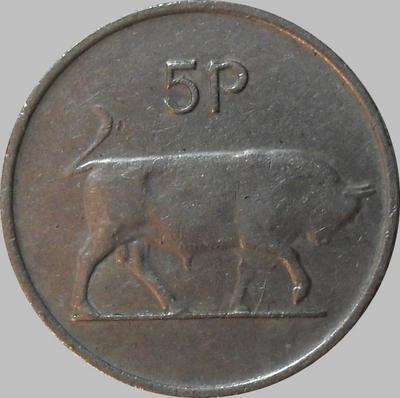5 пенсов 1980 Ирландия. Бык.