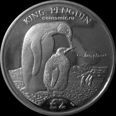 2 фунта 2012 Южная Георгия и Южные Сандвичевы острова. Королевский пингвин.