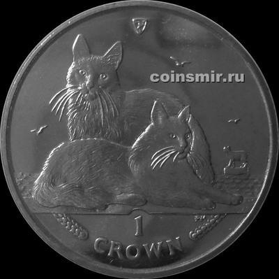 1 крона 2011 остров Мэн. Турецкая ангорская кошка.