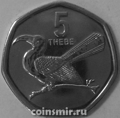 5 тхебе 2013 Ботсвана. Птица Токо.