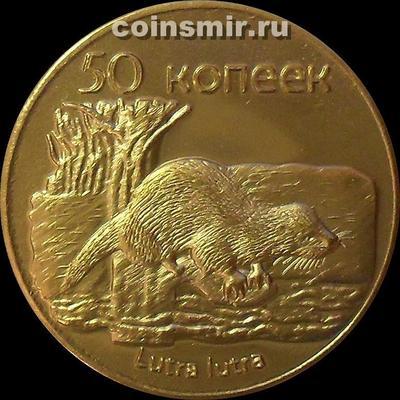 50 копеек 2013 Южная Осетия. Выдра.
