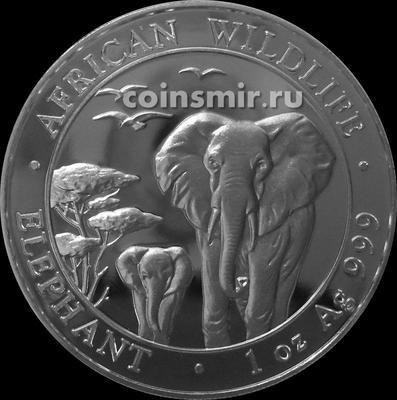100 шиллингов 2015 Сомали. Слоны.