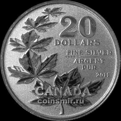 20 долларов 2011 Канада. Кленовые листы.