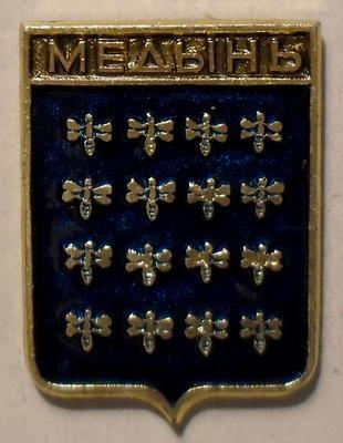 Значок Медынь.