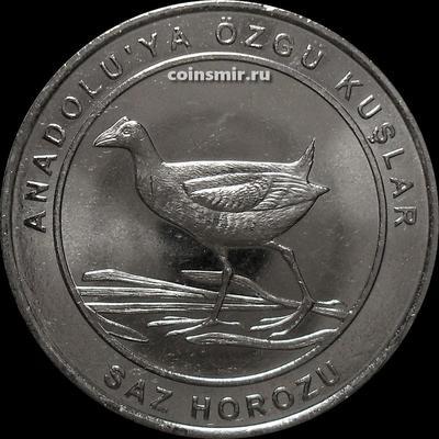1 куруш 2018 Турция. Птицы Анатолии — Султанка.