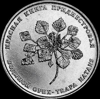 1 рубль 2019 Приднестровье. Водяной орех.
