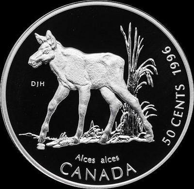 50 центов 1996 Канада. Лосенок.