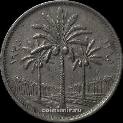 50 филсов 1975 Ирак.
