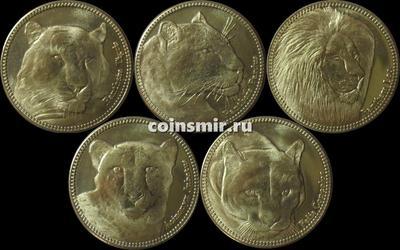 Набор из 5 монет 2016 Сомали. Большие кошки.