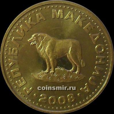 1 денар 2008 Македония. Овчарка.