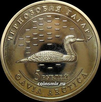 5 рублей 2013 Удмуртия. Чернозобая гагара.