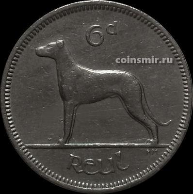 6 пенсов 1959 Ирландия. Ирландский волкодав.