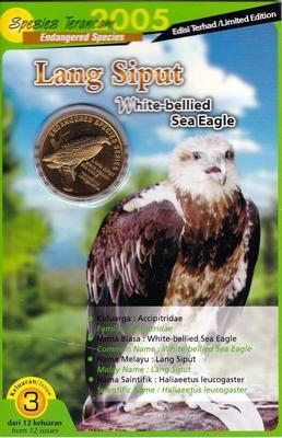 25 сен 2004 (2005) Малайзия. Белобрюхий орлан.