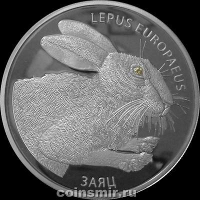20 рублей 2014 Беларусь. Заяц.