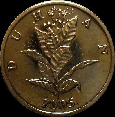 10 лип 2005 Хорватия. Табак обыкновенный.