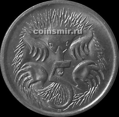 5 центов 1999 Австралия. Ехидна.