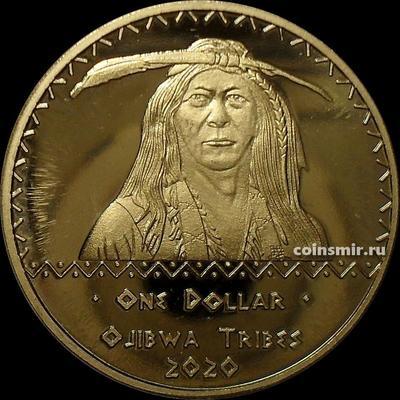 1 доллар 2020 племя Оджибве.