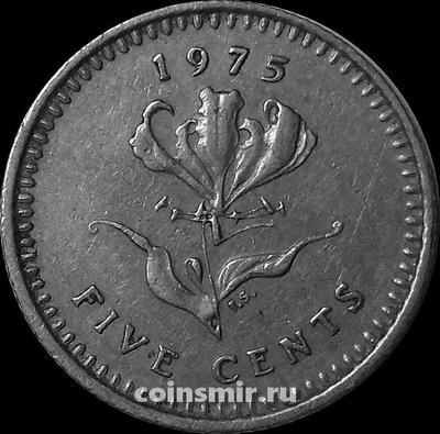 5 центов 1975 Родезия.